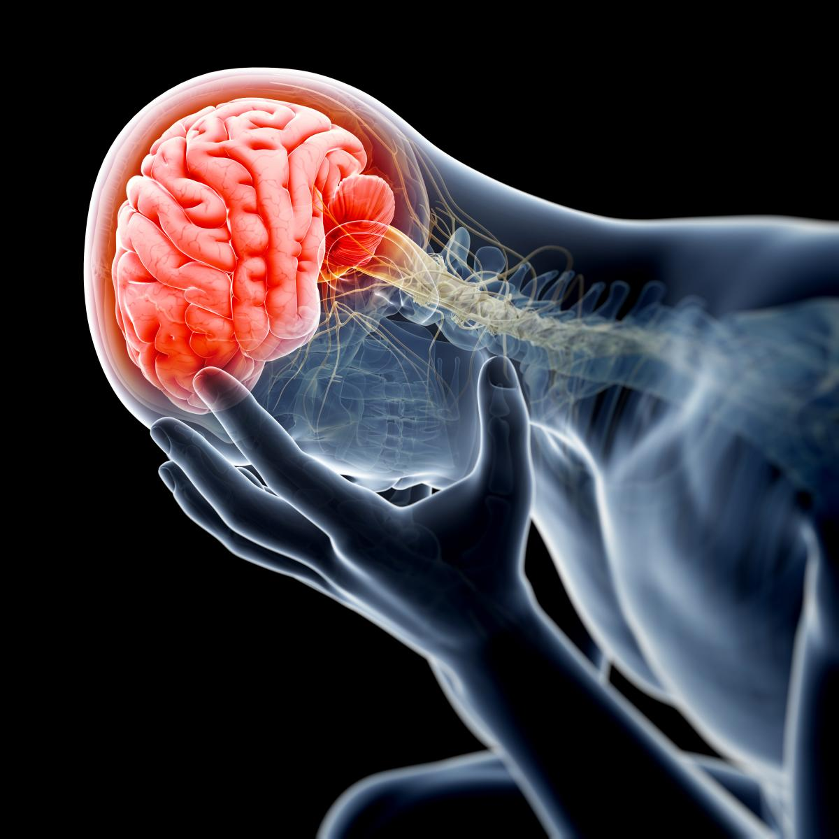 Traumatic Brain Injury Lawyer